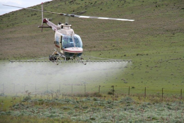 county-helicopters-Thistle-Spraying5