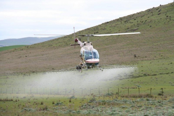 county-helicopters-Thistle-Spraying6