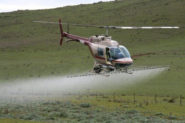 county-helicopters-Thistle-spraying4