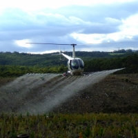 county-helicopters-Forestry-2