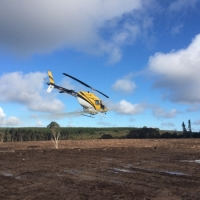 county-helicopters-Forestry19