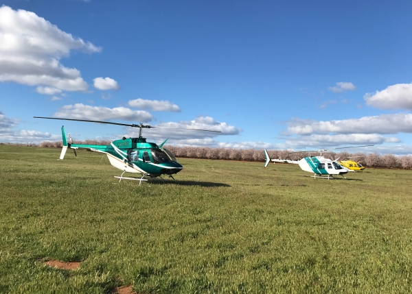 1_county-helicopters-Frost-standby1