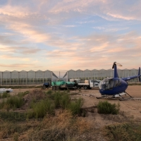 county-helicopters-Greenhouses1