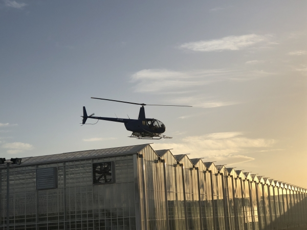 county-helicopters-Greenhouses4