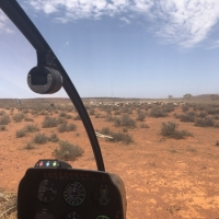 county-helicopters-Mustering7