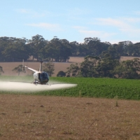 county-helicopters-Potato-spraying-(1)