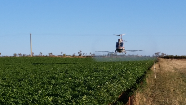 county-helicopters-Potatoes1